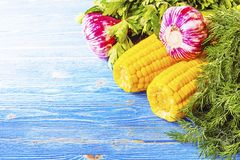 Garlic Parsley dill corn on the wooden table Stock Images