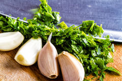 Garlic and parsley leaves Stock Photo