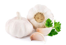 Garlic with parsley leaves Stock Photo