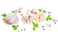 Garlic with parsley and a mix of peppers. Studio Photo Stock Photos