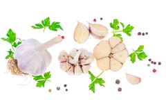 Garlic with parsley and a mix of peppers. Studio Photo Royalty Free Stock Photo