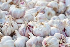 Garlic pattern background in market Royalty Free Stock Photography