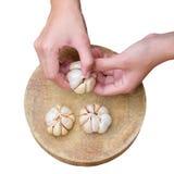 Garlic peel by hand. Royalty Free Stock Photos