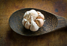 Garlic with peel on ladle Stock Image
