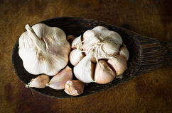 Garlic with peel on wood ladle Royalty Free Stock Photography
