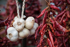 Garlic & Pepper. Some garlic bulbs and peppers as it is typical in hungary Royalty Free Stock Photo