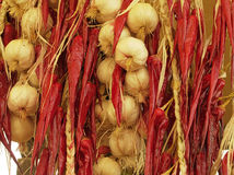 Garlic & Pepper. Mix of garlic and hot chilis hanging from the wall in typical market in Southern Italy Stock Image
