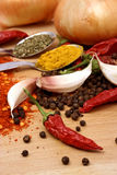Garlic, peppers and spices Royalty Free Stock Photography