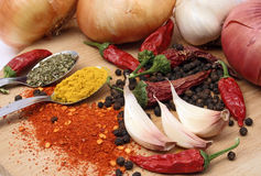 Garlic with peppers and spices Royalty Free Stock Images