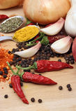 Garlic, peppers and spices Royalty Free Stock Photos