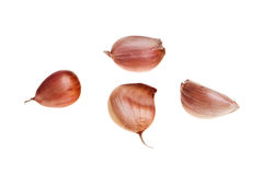 Garlic Pieces. Royalty Free Stock Photography