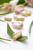 Garlic pills. Closeup of garlic extract pills and fresh garlic leaves and cloves best suited for health, anti-cholesterol and alternative medicine ads royalty free stock image