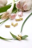 Garlic pills Stock Images