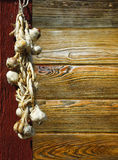 Garlic plait Stock Images
