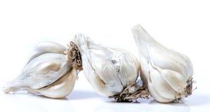 Garlic pods Royalty Free Stock Photo