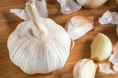 Garlic prepare for cooking close up Stock Image