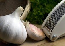 Garlic and Press Royalty Free Stock Images