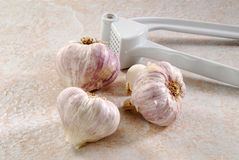 Garlic press Royalty Free Stock Photos