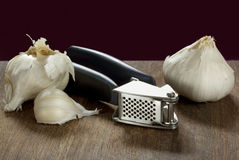 Garlic Press and Bulbs Royalty Free Stock Image