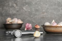 Garlic press and clove on table. Kitchen utensil royalty free stock photography
