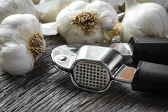 Garlic Press and Garlic Bulb Close Up Stock Photography
