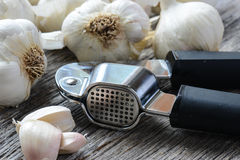 Garlic Press and Garlic Bulb Close Up on Rustic Wood Stock Images