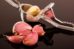 Garlic press. With one clove inside royalty free stock photos