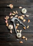 Garlic and garlic press stock image