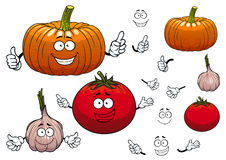 Garlic, pumpkin and tomato vegetables Royalty Free Stock Images