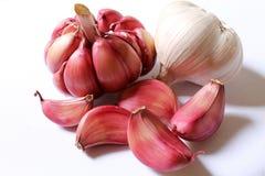Garlic, Purple Garlic Stock Photo