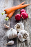 Garlic, Radishes, and Carrots. Three garlic, two cloves of garlic, three radishes, and two carrots on a old wooden table Royalty Free Stock Photos