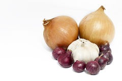 Garlic, red and bulb onions. Stock Images