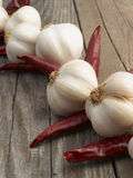Garlic with red hot chili peppers Royalty Free Stock Photos