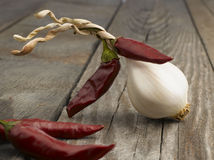 Garlic with red hot chili peppers Royalty Free Stock Image