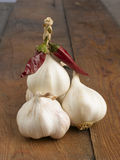 Garlic with red hot chili peppers Royalty Free Stock Photography