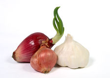 Garlic, Red Onion and Shallot. Red Onion, Shallot and Garlic on a white background Stock Images