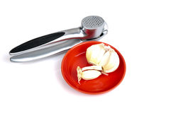 Garlic on red stone plate and garlic press behind it Royalty Free Stock Photography