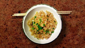 Garlic rice Ninniku Yakimeshi. Fried rice japannese food Royalty Free Stock Photos