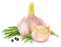 Garlic and rosemary Royalty Free Stock Images