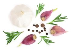 Garlic with rosemary and peppercorn isolated on white background. Top view. Flat lay pattern Stock Photos