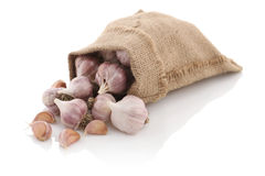 Garlic in a sack on a white background Royalty Free Stock Images