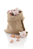 Garlic in a sack on a white background Stock Photos