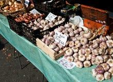 Garlic for sake Stock Image