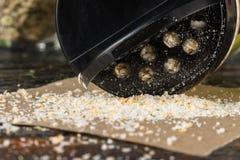Garlic Salt royalty free stock image