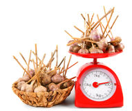 Garlic on scales and in a basket Stock Image