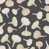 Garlic seamless pattern. Vector background garlic vegetable Stock Images