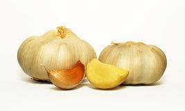 Garlic Seasoning. Efficacy of garlic, spice flavoring with garlics royalty free stock image