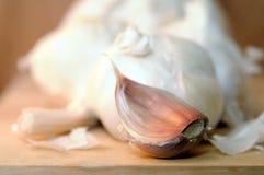 Garlic section Stock Photos