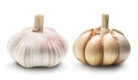 Garlic set isolated Royalty Free Stock Photos