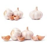 Garlic set isolated on white background Royalty Free Stock Image